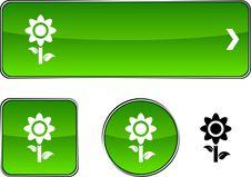 Free Flower  Button Set. Stock Photo - 14355340
