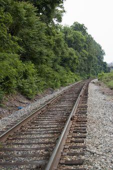 Free Lone Tracks Stock Photos - 14355633