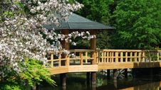 Free Japanese Garden Royalty Free Stock Photography - 14356747