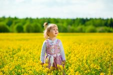 Girl On The Meadow Stock Image