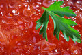Free Red Caviar Stock Photography - 14360502