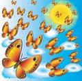 Free Butterflies Stock Photos - 14363863