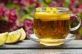 Free Herbal Tea Stock Images - 14368054