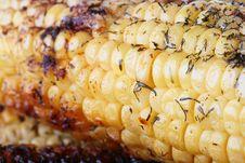 Paked Corn Royalty Free Stock Photos