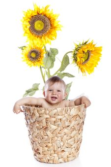 Free Baby Boy In Sunflowers Stock Image - 14361231