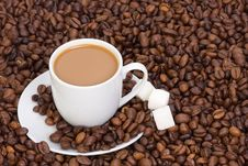 Cup Of Coffee At Beans Stock Photos