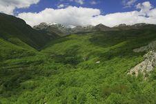 Free Mountain Royalty Free Stock Photo - 14366505
