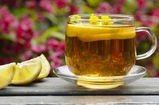 Free Herbal Tea Stock Images - 14368054