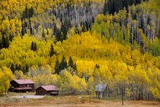 Free Scenic Autumn Landscape Stock Image - 14369011