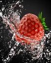 Free Fresh Strawberries Royalty Free Stock Image - 14374636