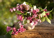 Free Bouquet Stock Photography - 14373192