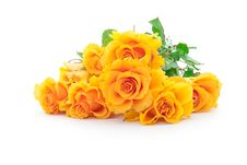 Free Bouquet Of Orange Roses Royalty Free Stock Photo - 14373495
