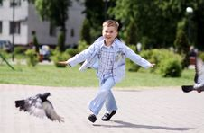 Free Boy Fly Like Dove Royalty Free Stock Images - 14373769