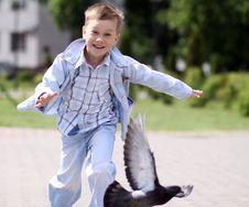 Free Boy Fly Like Dove Stock Image - 14373771