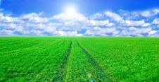 Free Green Field And Blue Sky Conceptual Image. Stock Image - 14375001