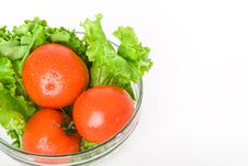 Free Tomato And Lettuce Stock Images - 14375364