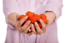 Free Young Female Hands Full Of Strawberries Royalty Free Stock Photography - 14375777