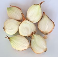 Free Cross Section Of Onion Royalty Free Stock Image - 14377056