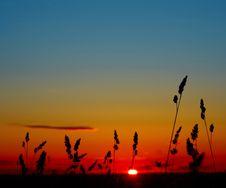 Free Sunrise Royalty Free Stock Photography - 14377457