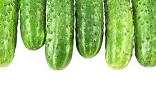 Free Cucumbers Royalty Free Stock Images - 14377989