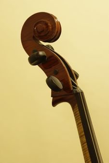 Free Cello Scroll Royalty Free Stock Image - 14379146