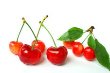 Free Cherry Fruits With Leaves Royalty Free Stock Photos - 14379448