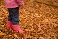 Free Girl In Autumn Leaves Royalty Free Stock Images - 14381619