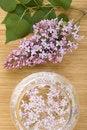 Free Aromatherapy Stock Photo - 14385160
