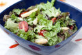 Free Summer Salad With Asparagus And Tomatoes Royalty Free Stock Images - 14388979