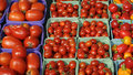 Free Organic Tomatoes In A Market Stall Stock Images - 14389934