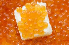 Free Small Sandwich With A Butter And Caviar Royalty Free Stock Image - 14380486
