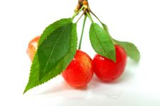 Free Cherry Fruits With Green Leaves Stock Photo - 14380840