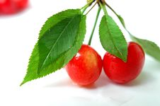 Free Cherry With Green Leaves Royalty Free Stock Image - 14380906