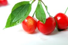 Free Cherry Fruits With Leaves Royalty Free Stock Images - 14380949