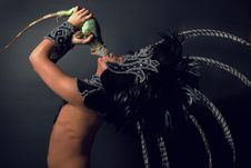 Pagan Priest In Ritual Suit With Green Iguana Royalty Free Stock Image