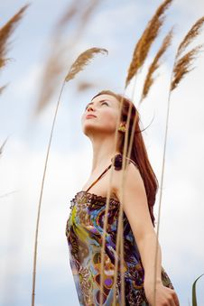 Free Summer Wind Royalty Free Stock Photos - 14383338