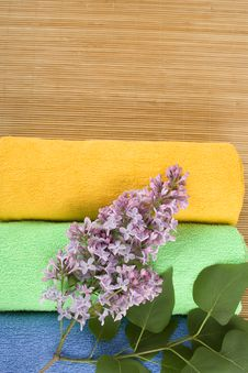 Free Coloured Towels Stock Photography - 14384382