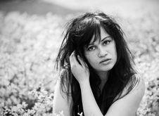 Free Portrait Of Cute Brunette Woman Royalty Free Stock Image - 14384406