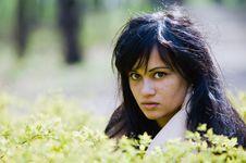 Free Portrait Of Sexy Brunette Woman Stock Photos - 14384543
