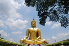 Free Big Buddha Image Stock Photos - 14384683