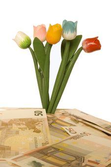 Free Money Stock Photography - 14384742
