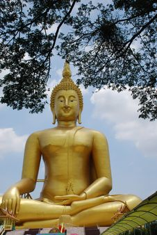 Free Big Gold Buddha Stock Photo - 14384770