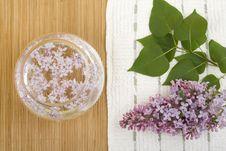 Free Aromatherapy Stock Image - 14385221