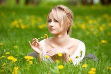 Free Girl In Dandelions Stock Image - 14386661