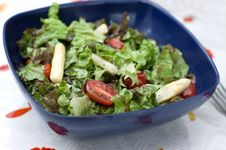 Free Summer Salad With Asparagus And Tomatoes Royalty Free Stock Photography - 14389017