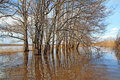 Free Flood Royalty Free Stock Photo - 14392315