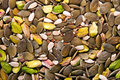 Free MIxed Seeds 2 Stock Images - 14397084