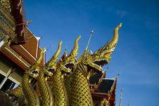 Free Naga Stock Image - 14390491