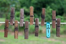 Free Bamboo Clips Royalty Free Stock Image - 14390966