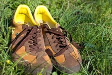 Men S Shoes In Grass Stock Image